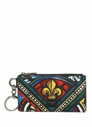 Dolce&Gabbana Cüzdan Renkli